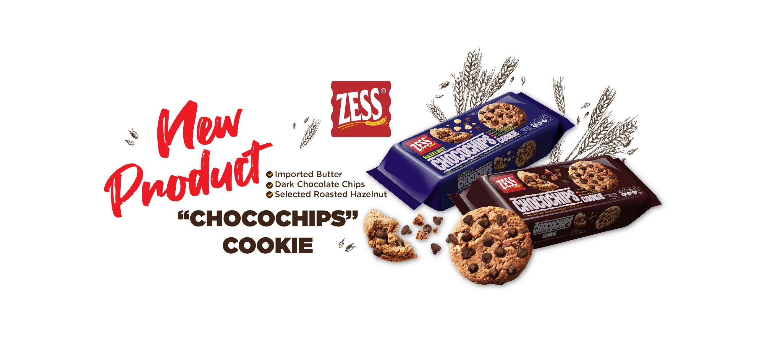 Choco Chips banner Web-03